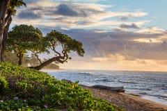 Wschód słońca w Kauai, Hawaje obrazy royalty free