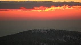 Wschód słońca w lesie zdjęcie wideo