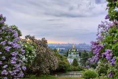 Wschód słońca w ogródzie botanicznym Obrazy Royalty Free