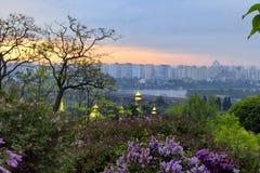 Wschód słońca w ogródzie botanicznym Fotografia Royalty Free