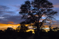 Wschód słońca w Południowa Afryka Fotografia Stock