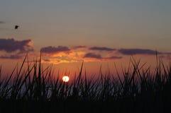 Wschód słońca w Racine obrazy royalty free