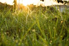 Wschód słońca w ranek Fotografia Royalty Free