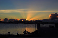 Wschód słońca z ptakami Zdjęcia Royalty Free