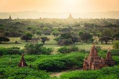 Wschód słońca z starymi świątyniami i zielonym lanscape, Bagan, Myanmar Obraz Stock