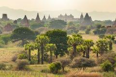 Wschód słońca z starymi świątyniami i zielonym lanscape, Bagan, Myanmar Fotografia Stock