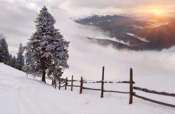 wschód słońca zima Fotografia Royalty Free