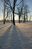 wschód słońca zimy. Obrazy Stock