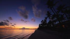 Wsch?d s?o?ca nad tropikaln? wyspy pla??, drzewkami palmowymi i cana republika punta republika zdjęcie wideo