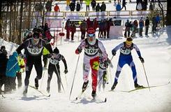 Wschodni Kanadyjscy mistrzostwa zdjęcie royalty free