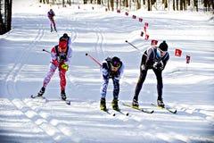 Wschodni Kanadyjscy mistrzostwa zdjęcia stock
