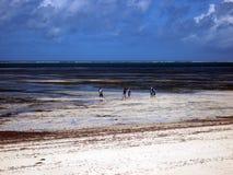 Wschodnia afrykanin plaża Zdjęcia Royalty Free