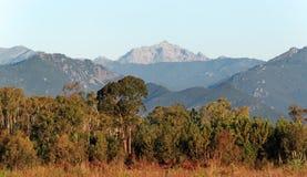 Wschodnia równina Corsica wyspa zdjęcia royalty free