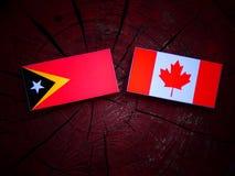 Wschodnia Timorese flaga z kanadyjczyk flaga na drzewnym fiszorku odizolowywającym zdjęcia royalty free