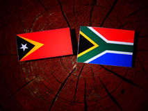 Wschodnia Timorese flaga z południe - afrykanin flaga na drzewnego fiszorka isola Obrazy Royalty Free