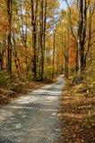 wschodnie Tennessee sceniczny jesieni Zdjęcia Stock