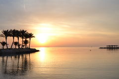 Wschodu słońca czerwony morze Egipt Fotografia Royalty Free