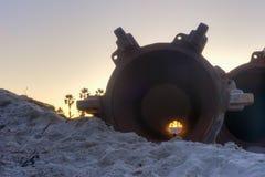 Wschodu słońca jaśnienie przez drymb Zdjęcia Stock