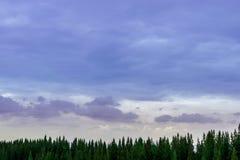 Wschodu słońca krajobraz mgłowa i chmurna dolina Obraz Royalty Free