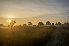 Wschodu słońca moorland Fotografia Stock
