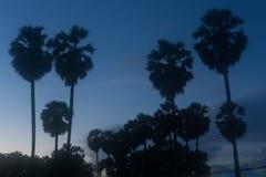 Wschodu słońca scenka nad Dongtan plaży Sattahip zatoką w wczesnym mornin obraz royalty free