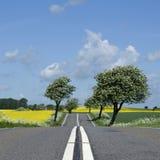 wsi droga Obraz Royalty Free