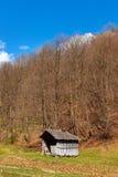 Wsi krajobraz z drewnianą chałupą i lasem Obrazy Stock