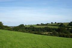 wsi pola zieleni widok Zdjęcie Royalty Free