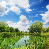 wsi rzeka Obrazy Royalty Free
