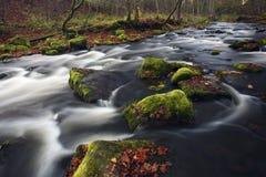 wsi rzeka Zdjęcia Royalty Free