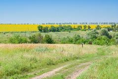 wsi ukrainian Obrazy Stock