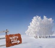 wskazującego kruszcowego biegunu północny ośniedziały znak Zdjęcie Royalty Free