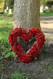 Współczucie kwitnie blisko drzewa obraz royalty free