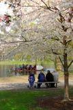 wspólne bostonu ogrodu społeczeństwo usa Obrazy Stock