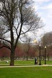 wspólne bostonu ogrodu społeczeństwo usa Obraz Stock