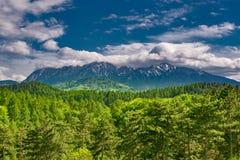 Wspaniały panoramiczny widok iglasty las na możnych Carpathians górach pięknym błękitnym chmurnego nieba tle i zdjęcie royalty free