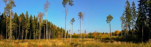 Wspaniała jesień krajobrazu panorama Fotografia Royalty Free