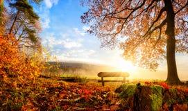 Wspaniała jesieni sceneria Obrazy Royalty Free