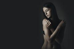 wspaniała piękno brunetka Obraz Royalty Free