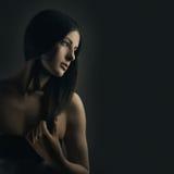 wspaniała piękno brunetka Zdjęcia Stock