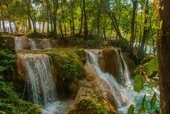 Wspaniała siklawa w Meksyk, piękna sceneria przegapia siklawy Agua Azul blisko Palenque Chiapas Obraz Royalty Free