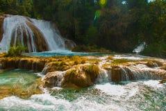 Wspaniała siklawa w Meksyk, piękna sceneria przegapia siklawy Agua Azul blisko Palenque Chiapas Zdjęcia Royalty Free