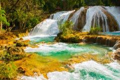 Wspaniała siklawa w Meksyk, piękna sceneria przegapia siklawy Agua Azul blisko Palenque Chiapas Obrazy Stock