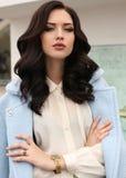 Wspaniała zmysłowa kobieta z ciemnym włosy w eleganckim odziewa zdjęcia stock