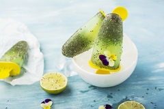 Wspaniałej domowej roboty zieleni owocowy jarski bezpłatny lody z chia ziarnami, owocowy sok, wapno z Obraz Stock