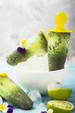 Wspaniałej domowej roboty zieleni owocowy jarski bezpłatny lody z chia ziarnami, owocowy sok, wapno z Zdjęcie Stock