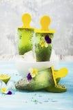 Wspaniałej domowej roboty zieleni owocowy jarski bezpłatny lody z chia ziarnami, owocowy sok, wapno z Zdjęcia Stock