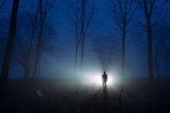 Wspaniałej sylwetki mglisty las przy świtem Obraz Royalty Free