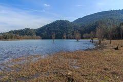 Wspaniałość wielki jezioro przed ja Obraz Royalty Free