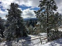 Wspaniały śnieżny Kolorado dzień obrazy stock